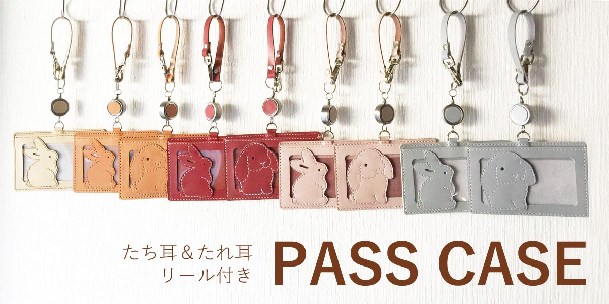 pass_case_top-1